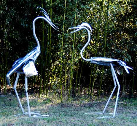 1781herons_courting